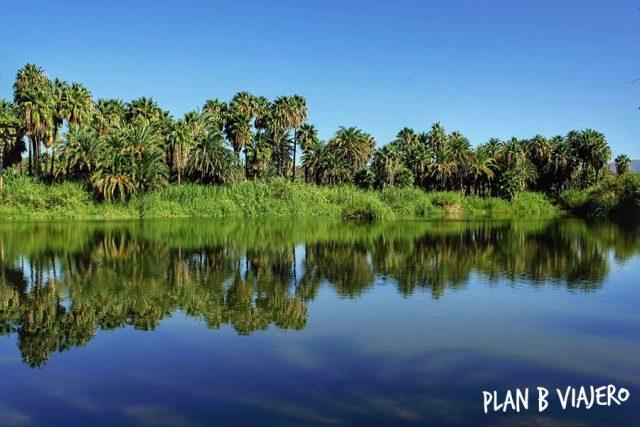 plan b viajero, oasis de san ignacio baja california sur